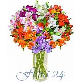 Купить цветы в иличевске купить розыгрыши шутки шуточные ужасы страшилки